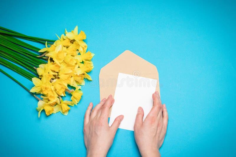Руки женщин, конверт с письмом, цветки весны Плоское положение, взгляд сверху, космос экземпляра Шаблон для блога стоковые фото