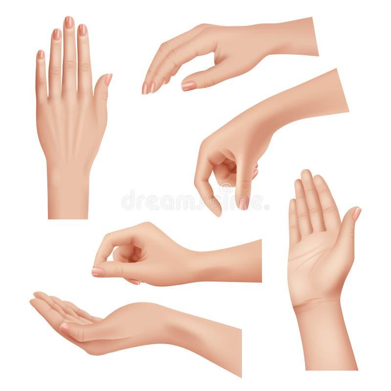 Руки жестов женщина заботливая кожа ладонь и пальцы ногти ногти женщина косметика руки реалистичные векторы закрытия бесплатная иллюстрация