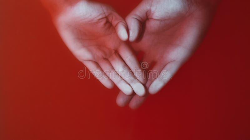 Руки любящей пары отжатой с ладонями к стеклу в красной воде, руки человека и женщины в форме сердца, любовь концепции и стоковые изображения rf