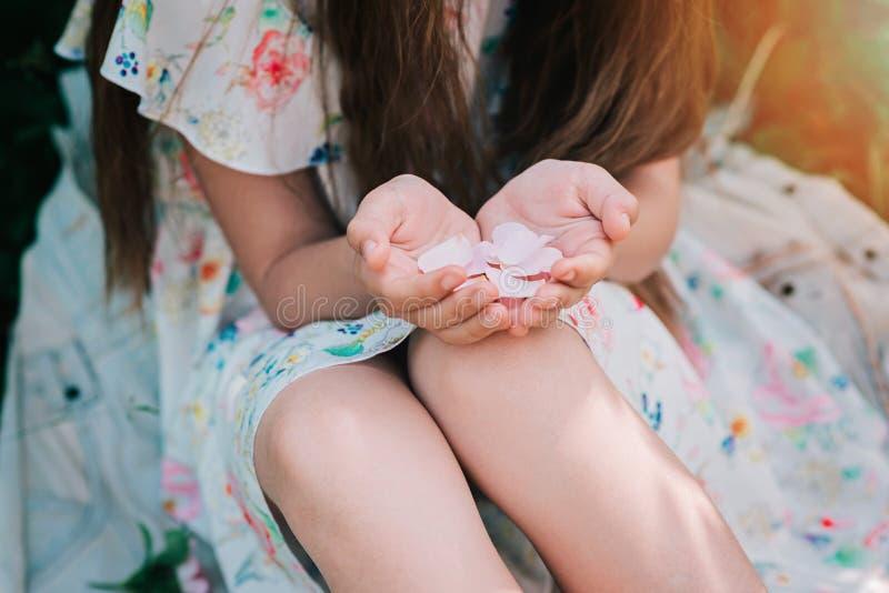 Руки маленькой девочки держа лепестки розовые цветка стоковые изображения rf