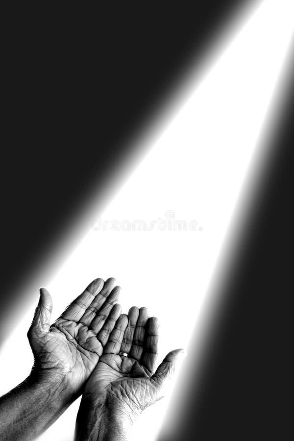 руки моля стоковые изображения