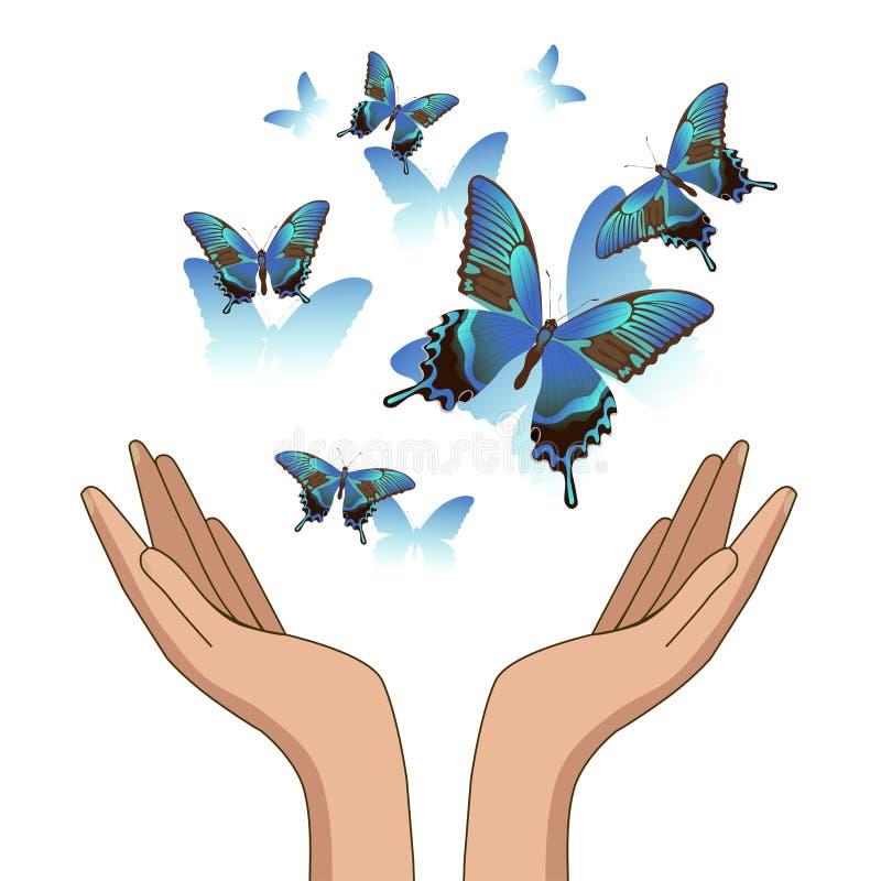 Руки, позволили вне голубым красивым бабочкам r иллюстрация вектора