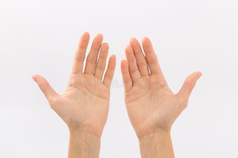 руки предпосылки женские белые жесты стоковое изображение rf