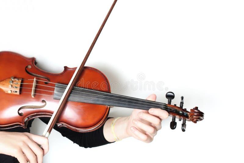 Руки скрипача игрока скрипки изолированные на белизне стоковые фото