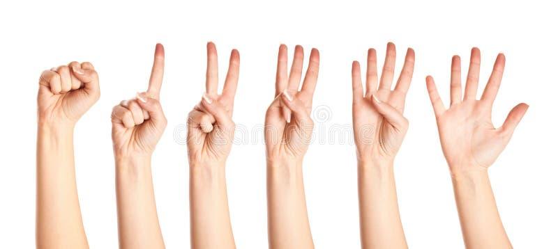 руки собрания стоковая фотография rf
