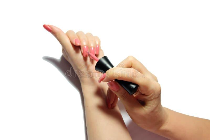 Руки с розовым маникюром стоковые изображения rf