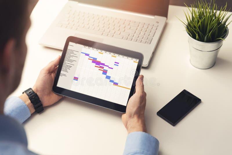 руководитель проекта смотря планово-контрольный график на цифровой таблетке стоковое изображение