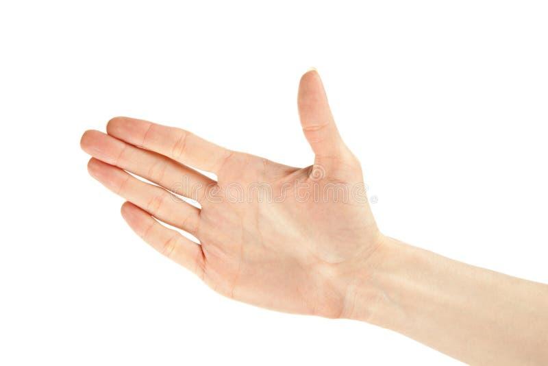 рукопожатие руки готовое стоковая фотография rf