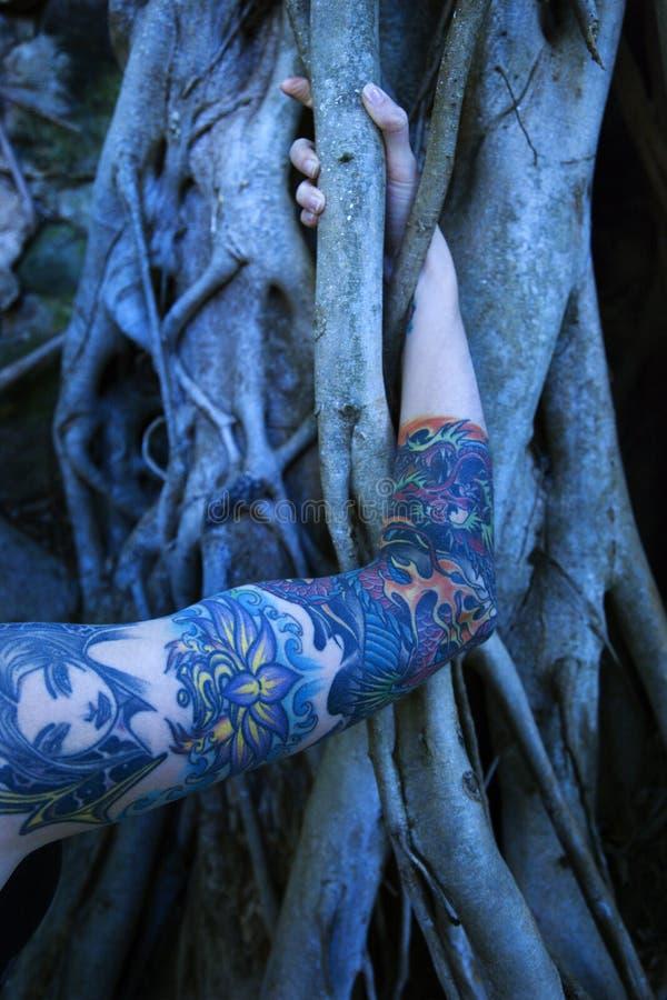 рукоятка s татуировала женщину стоковые фото