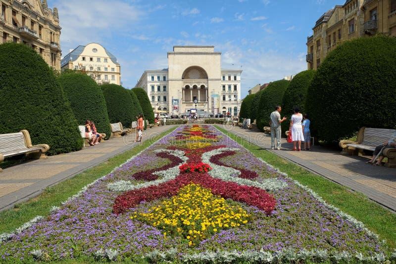Румынская национальная опера в Timisoara общественное заведение оперы и балета и была построена в 1875 стоковое фото