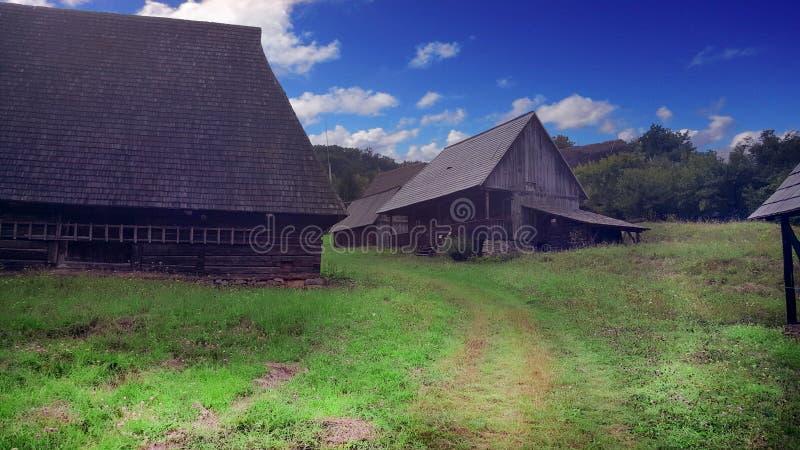Румынская ферма стоковые изображения rf
