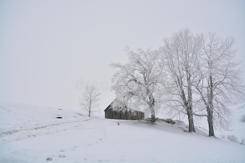 Румынский традиционный амбар расположенный за некоторыми деревьями вполне снега в сезоне падения стоковое изображение rf
