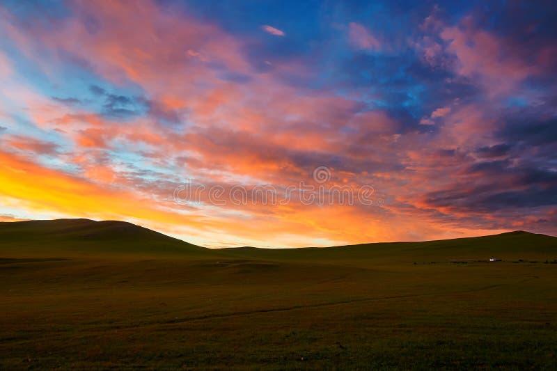 Румяные облака рассвета на злаковике Hulunbuir стоковое фото rf