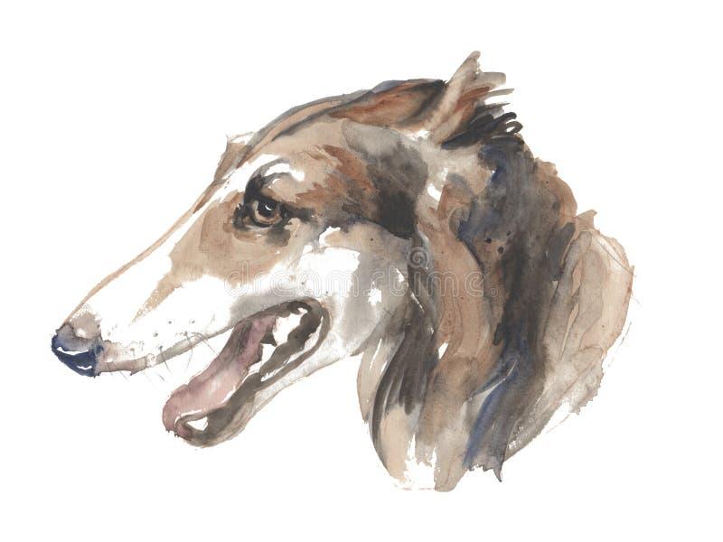 Русская борзая - покрашенная вручную собака акварели бесплатная иллюстрация