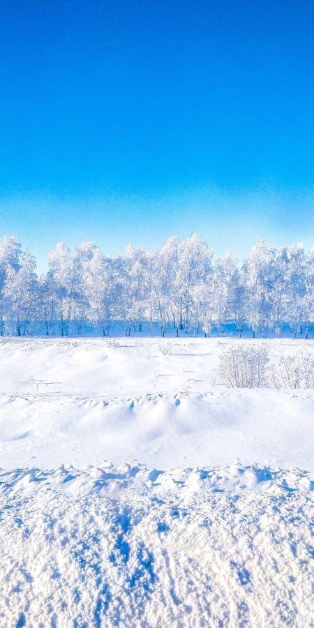 Русская зима Сибирь стоковое изображение rf