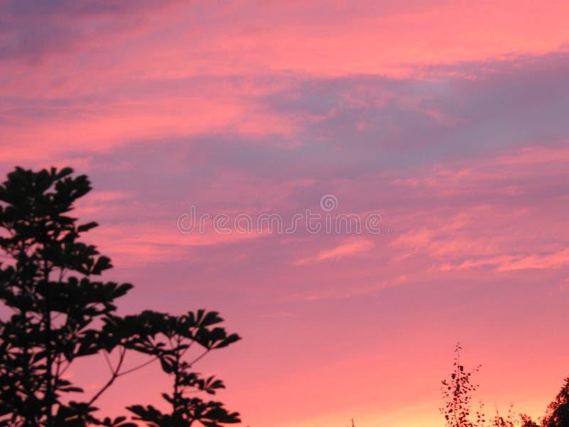 Русский заход солнца вечера стоковое фото rf