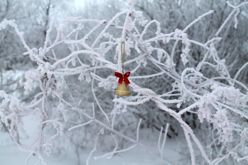 Русское холодное рождество мечты стоковые изображения