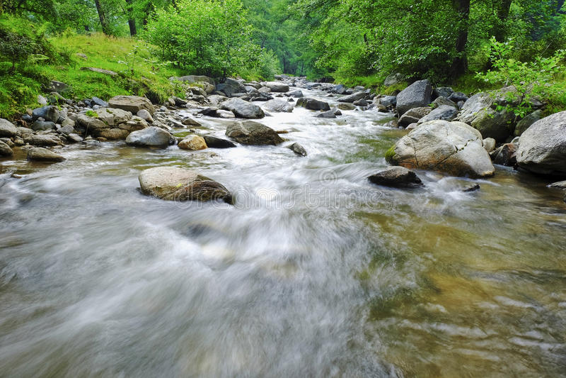 Русло реки стоковые фотографии rf