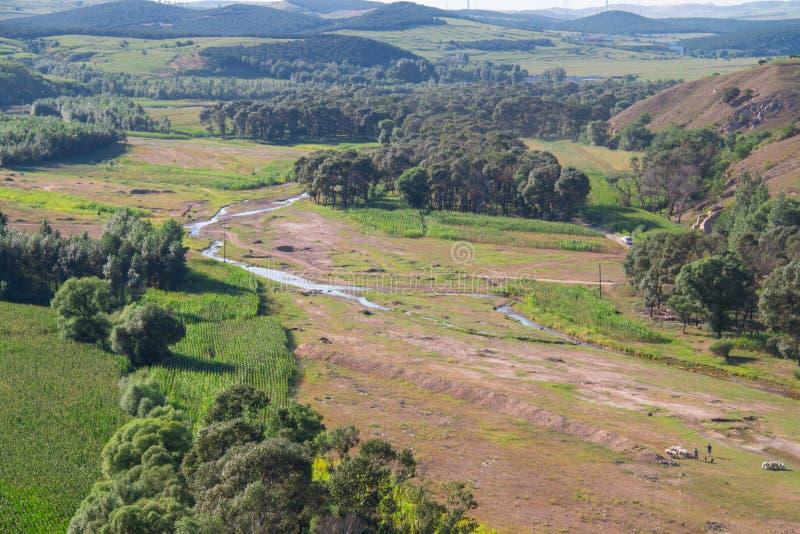 Русло реки стоковые фото