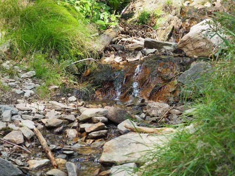 Ручеек в горах стоковое изображение rf