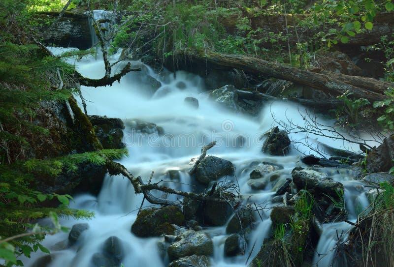 Ручеек в горах стоковое изображение