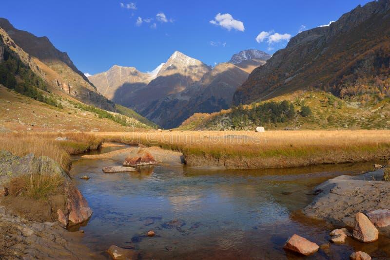 Ручеек в горах стоковые фото