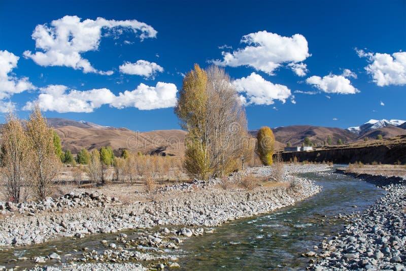 Ручеек с деревьями в осени и горы с backgroun голубого неба стоковое фото