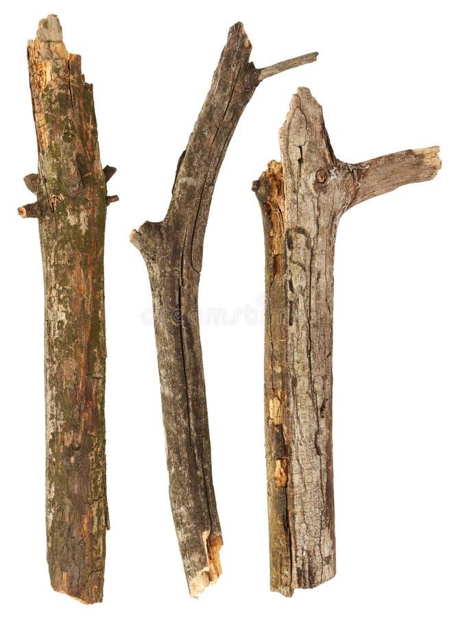 Ручки дерева стоковая фотография rf