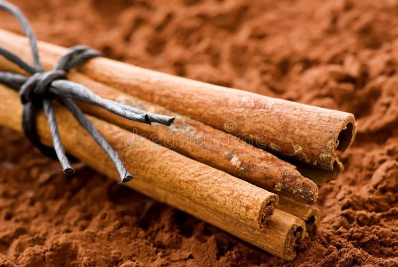ручки какао циннамона стоковые изображения rf