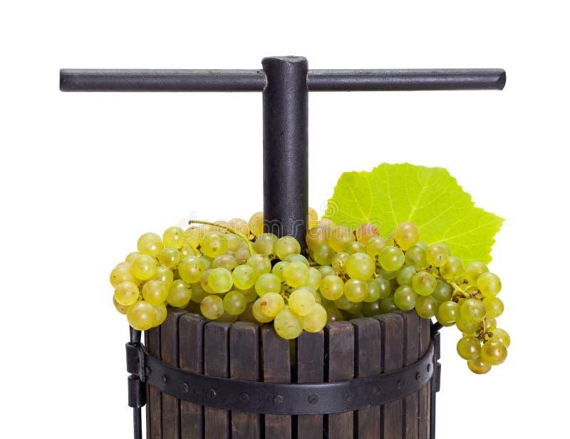 Ручная отжимая утварь заполненная с белой виноградиной стоковая фотография