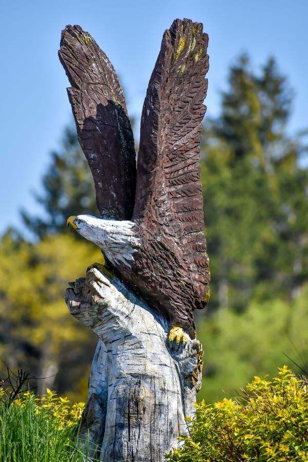 Ручной белоголосый орел на обшивке стоковая фотография rf