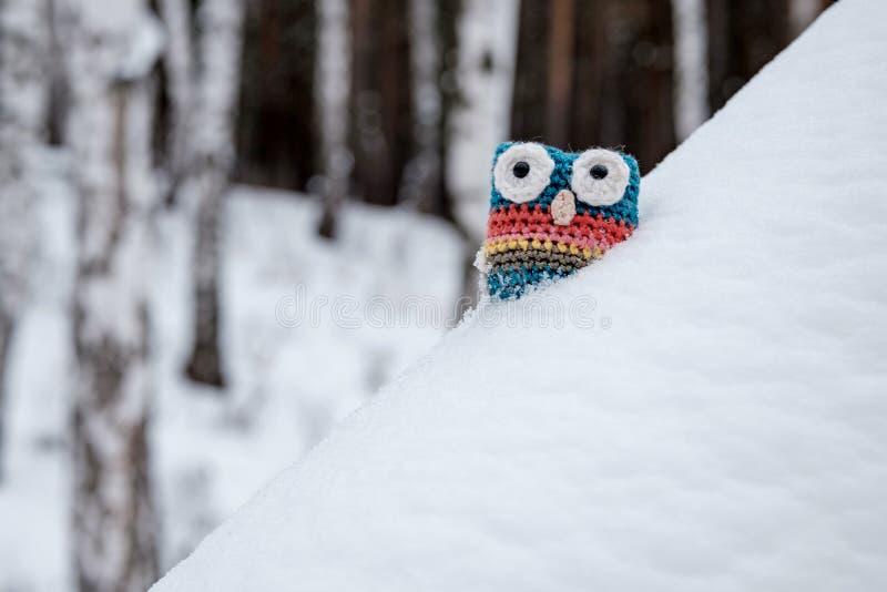 Ручной работы связанный сыч сделал из шерстей, на открытом воздухе игрушки в лесе стоковое изображение