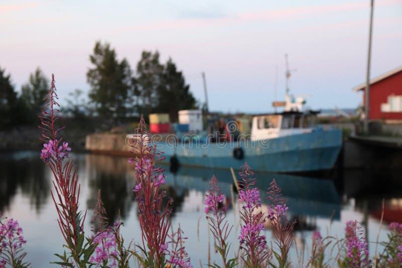 Рыбацкая лодка в гавани стоковое фото