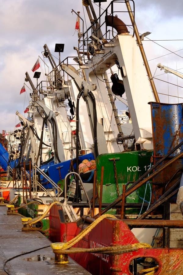 Рыбацкие лодки ждут разгружать свежо уловленных рыб стоковое изображение rf