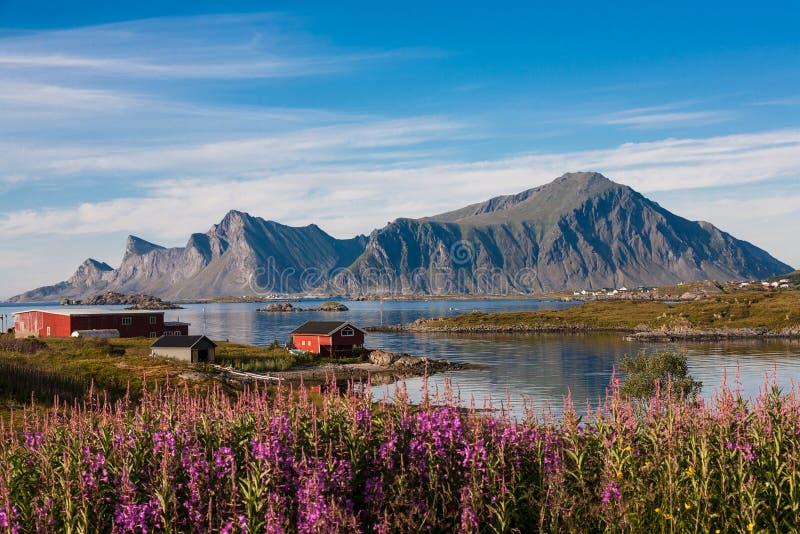Рыбацкий поселок в Норвегии стоковые изображения rf
