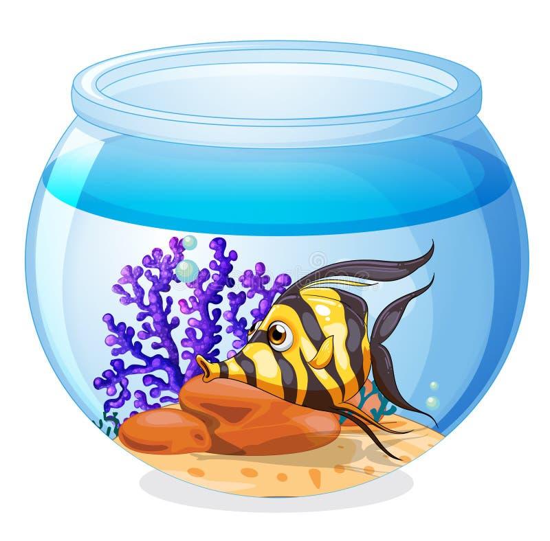 Рыба внутри опарника иллюстрация штока