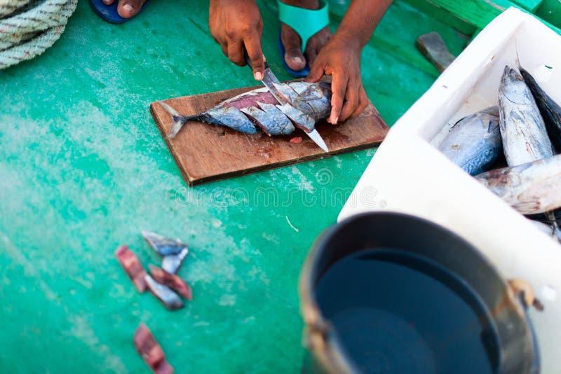 Download Рыбалка стоковое изображение. изображение насчитывающей кабель - 40576447