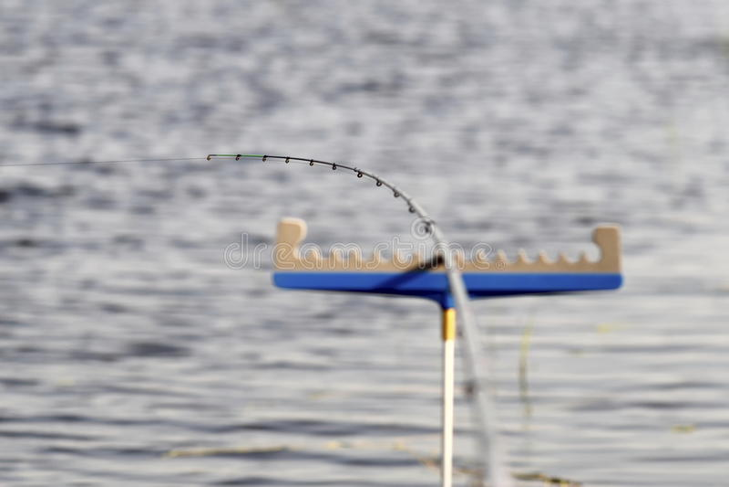 Рыба приходит! стоковое фото