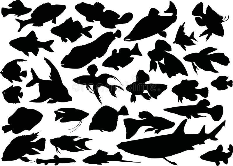 рыба silhouettes 30 иллюстрация вектора