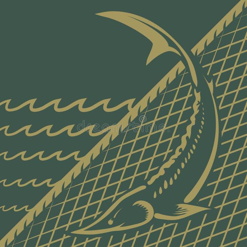 Рыбная ловля стерляжины бесплатная иллюстрация