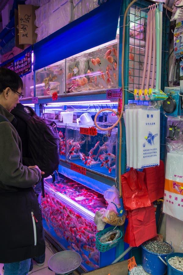 Рыбный базар в Гонконге, Китае стоковые фото