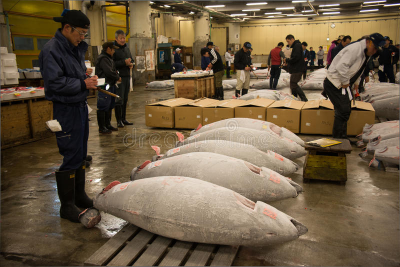 Рыбный базар Tsukiji, Япония стоковое изображение
