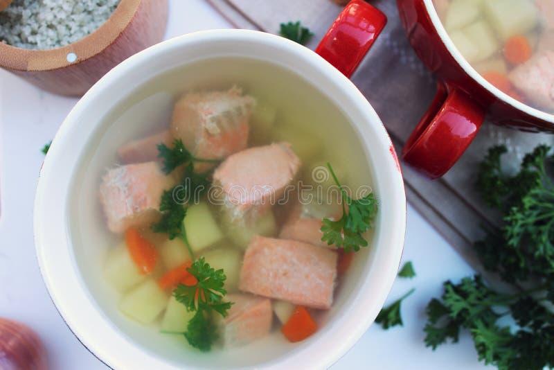 Рыбный суп с картофелем, морковкой и петрушкой стоковое фото