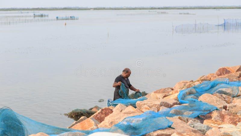 Рыболов на лагуне - Джафна - Шри-Ланка креветки стоковая фотография