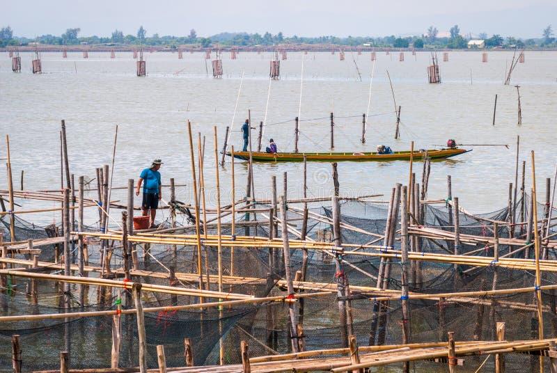 Рыболов на платформе, озеро Songkhla стоковые изображения rf