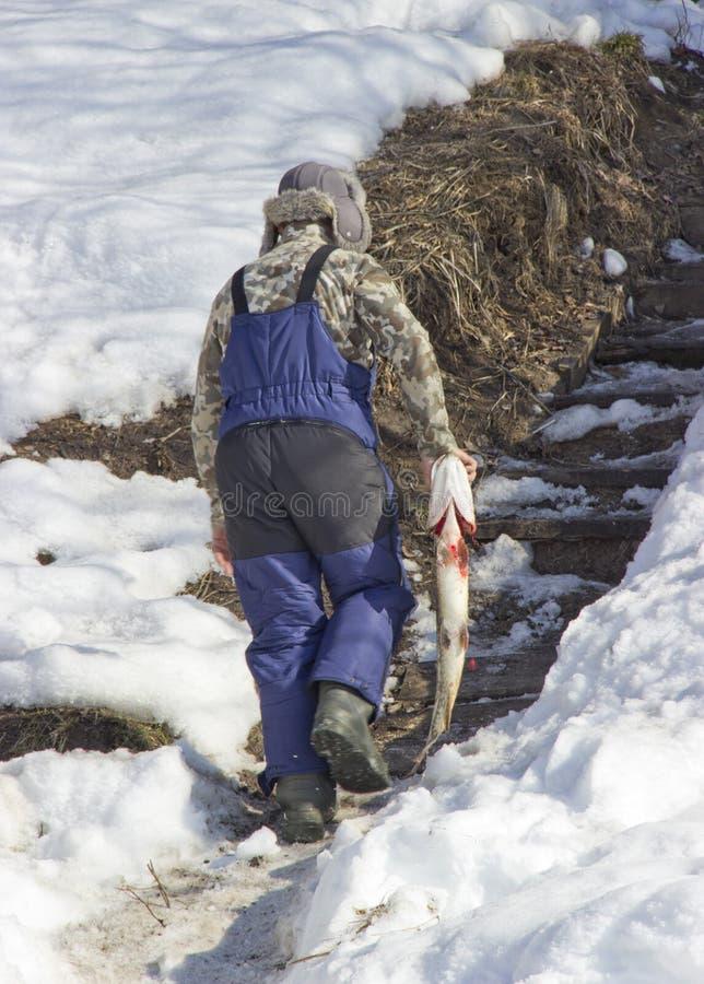 Рыболов носит рыб стоковое изображение rf