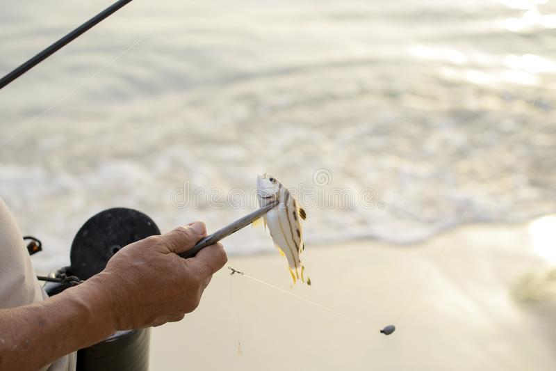 Рыболов удя на море стоковое фото
