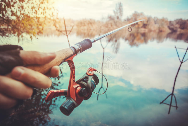 Рыболовная удочка около пруда в утре стоковое фото rf