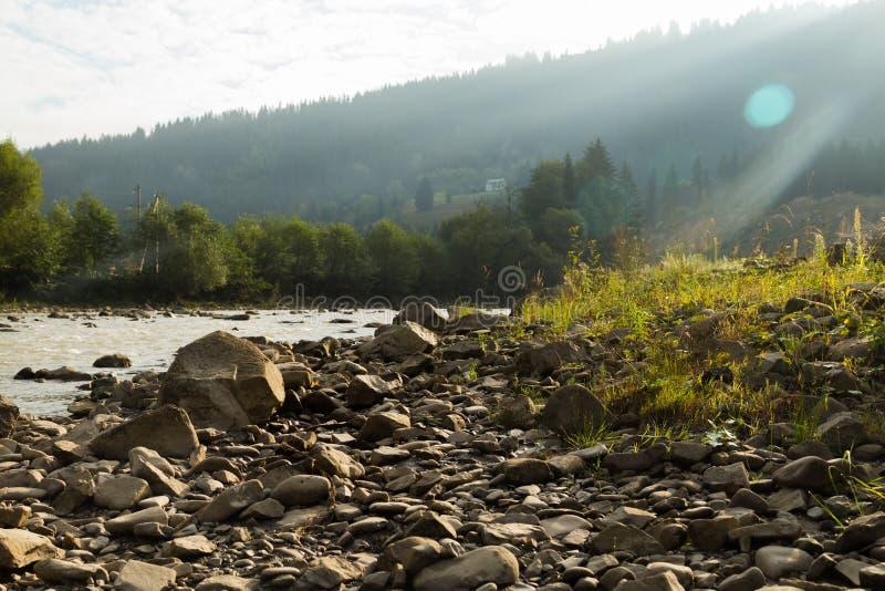 Рыболов на реке горы стоковые изображения rf