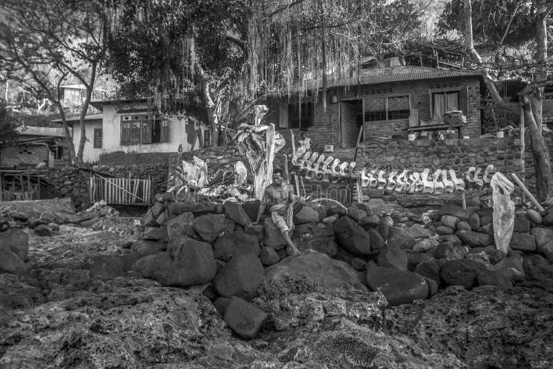 Рыболов от Lamalera стоковые фотографии rf